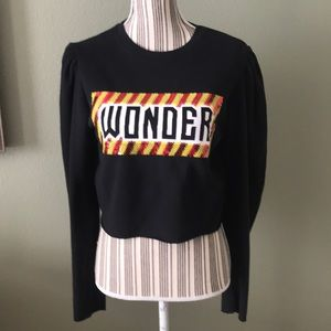 Zara Tops - Trafaluc Zara Cropped  Wonder Sequence sweatshirt